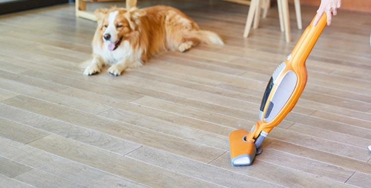best handheld battery vacuum
